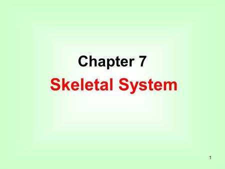 1 Chapter 7 Skeletal System. 2 Introduction A. Bones are very active tissues. B. Each bone is made up of several types of tissues and so is an organ.