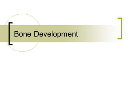 Bone Development. Composition of Bone Approximately 33%-Organic  Collagen  Glycosaminoglycans (GAGs)  Contain Chondroitin sulfate  Resilience and.