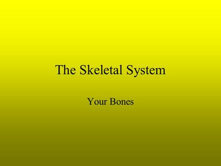 The Skeletal System Your Bones. 2 Types of Bone 1.Intramembranous a. Develop from layers of connective tissue b. Osteoblasts- form bone tissue 2.Endochondral.