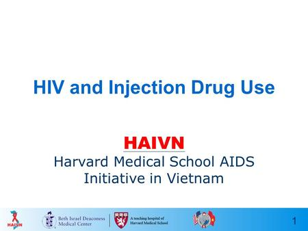 1 HIV and Injection Drug Use HAIVN Harvard Medical School AIDS Initiative in Vietnam.