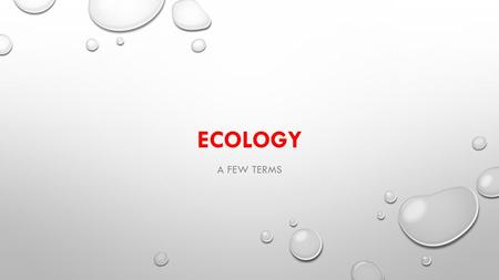 ECOLOGY A FEW TERMS. BIOTIC FACTORS The things that are living, or that came from living things EXAMPLES: Plants Animals Bacteria Fungus (mushrooms, yeasts)