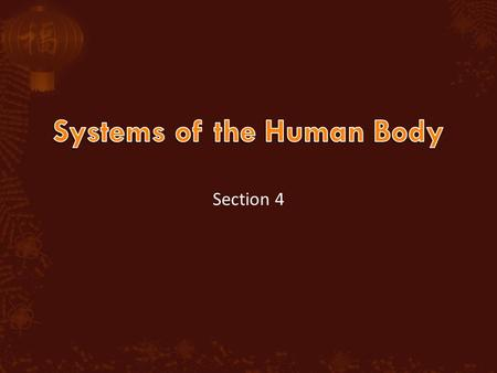 Section 4.  Objective  You will understand the functions of various body systems.