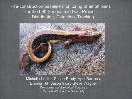 Pre-construction baseline monitoring of amphibians for the I-90 Snoqualmie East Project: Distribution, Detection, Tracking Pre-construction baseline monitoring.
