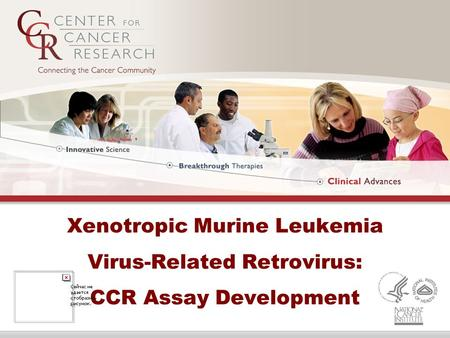 Xenotropic Murine Leukemia Virus-Related Retrovirus: CCR Assay Development.