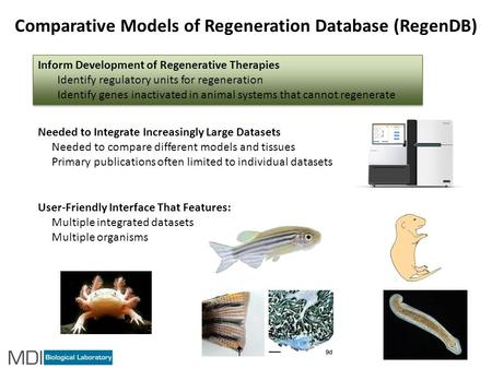 Inform Development of Regenerative Therapies Identify regulatory units for regeneration Identify genes inactivated in animal systems that cannot regenerate.