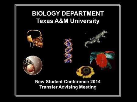 BIOLOGY DEPARTMENT Texas A&M University New Student Conference 2014 Transfer Advising Meeting.