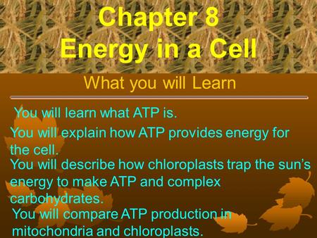 Chapter 8 Energy in a Cell What you will Learn You will learn what ATP is. You will explain how ATP provides energy for the cell. You will describe how.