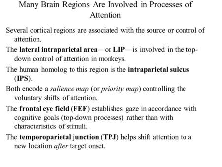 Many Brain Regions Are Involved in Processes of Attention Several cortical regions are associated with the source or control of attention. The lateral.