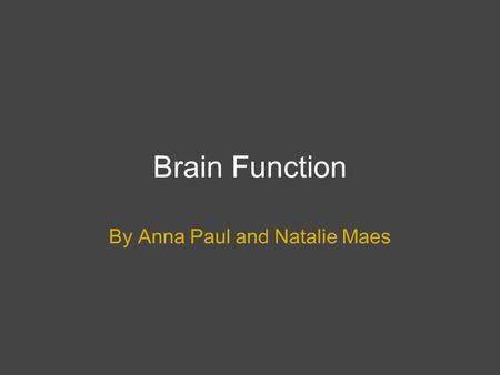 Brain Function By Anna Paul and Natalie Maes. The Three Parts of the Brain The adult brain is composed of three major divisions: the Cerebrum, Cerebellum.