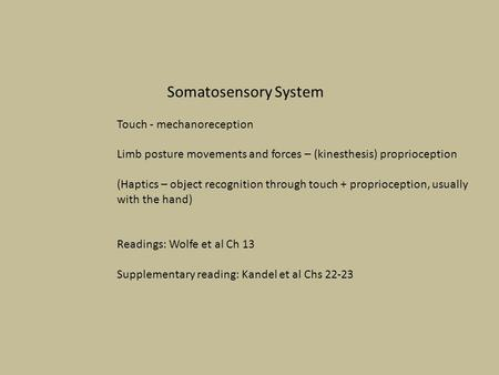 Somatosensory System Touch - mechanoreception Limb posture movements and forces – (kinesthesis) proprioception (Haptics – object recognition through touch.