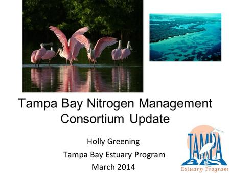 Tampa Bay Nitrogen Management Consortium Update Holly Greening Tampa Bay Estuary Program March 2014.