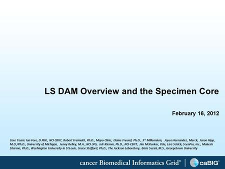 1 LS DAM Overview and the Specimen Core February 16, 2012 Core Team: Ian Fore, D.Phil., NCI CBIIT, Robert Freimuth, Ph.D., Mayo Clinic, Elaine Freund,