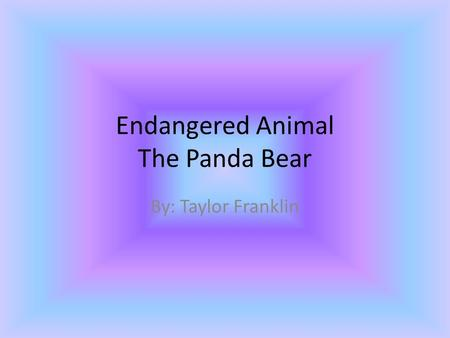 Endangered Animal The Panda Bear By: Taylor Franklin.