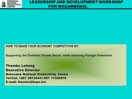 LEADERSHIP AND DEVELOPMENT WORKSHOP FOR MOZAMBIQUE. HOW TO MAKE YOUR ECONOMY COMPETITIVE BY: Supporting the Domestic Private Sector while attracting Foreign.
