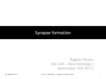 5th September 2013Bio 334 - Neurobiology I - Synapse and map formation1 Synapse formation Raghav Rajan Bio 334 – Neurobiology I September 5th 2013.