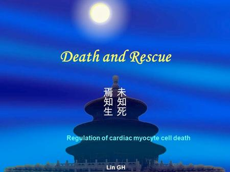 Death and Rescue Regulation of cardiac myocyte cell death Lin GH.