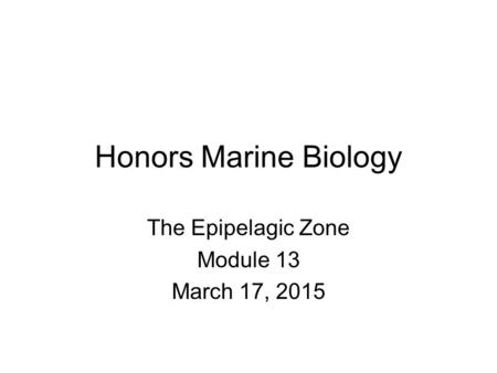 Honors Marine Biology The Epipelagic Zone Module 13 March 17, 2015.