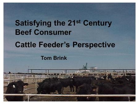 Satisfying the 21 st Century Beef Consumer Cattle Feeder's Perspective Tom Brink.