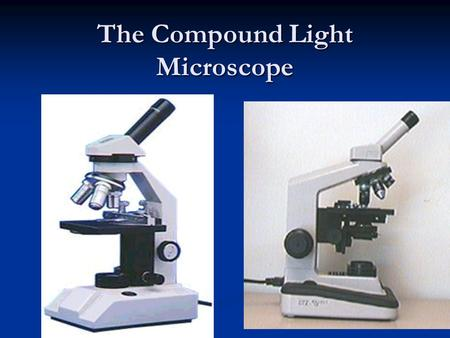 The Compound Light Microscope. Parts of the Microscope 1. Ocular lens: eyepiece (10x magnification) First lens First lens 2. Arm: connects base and body.