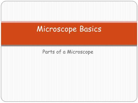 Parts of a Microscope Microscope Basics. Label the Compound Light Microscope (Handout) Ocular lens Body Tube Coarse Adjustment Knob Fine adjustment Knob.