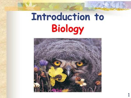 1 Introduction to Biology. 2 Biology – The Study of Life Life arose more than 3.5 billion years ago First organisms (living things) were single celled.