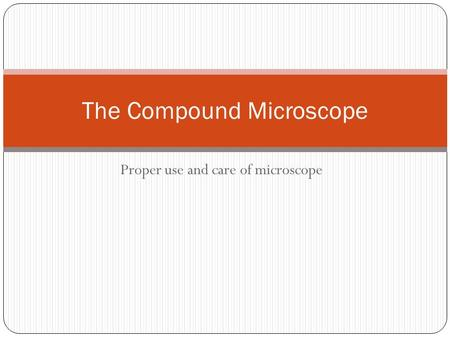 The Compound Microscope
