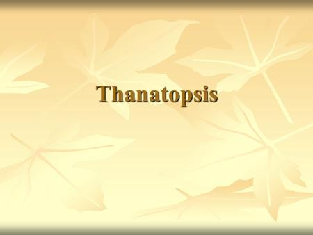 theme in thanatopsis Themes in thanatopsis, analysis of key thanatopsis themes death is definitely the big idea in thanatopsis from the title to the last line, this is a poem all about dying.