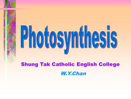 Shung Tak Catholic English College W.Y.Chan Experiments on photosynthesis Destarching  Starch is a detectable product of photosynthesis.  Presence.