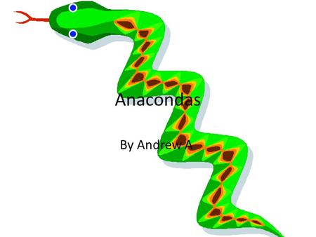 Anacondas By Andrew A. Physical Characteristics Protective coloring camouflages them from prey. Thick as a telephone pole. Often over 20 feet long. Eyes.