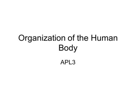 Organization of the Human Body APL3. Body cavities Dorsal Cavity –Cranial cavity— contains the brain –Spinal cavity-contains the spinal cord Cavities.