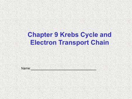 Name:____________________________________ Chapter 9 Krebs Cycle and Electron Transport Chain.