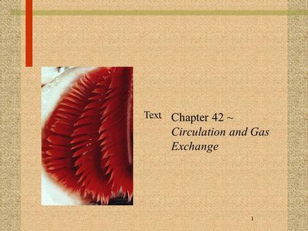 1 Chapter 42 ~ Circulation and Gas Exchange Text.