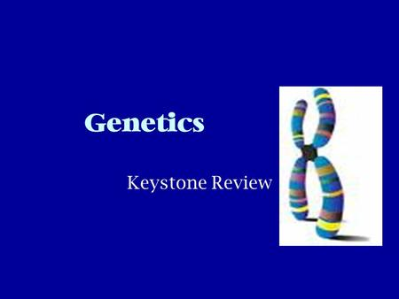 Genetics Keystone Review. Terms You Need To Know Gene- sequence of DNA that codes for a protein and thus determines a trait Trait- a characteristic that.
