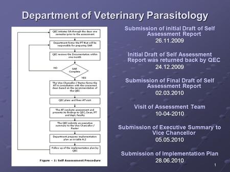 1 Department of Veterinary Parasitology Submission of initial Draft of Self Assessment Report 26.11.2009 Initial Draft of Self Assessment Report was returned.