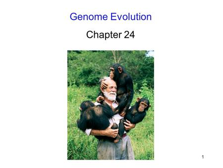 1 Genome Evolution Chapter 24. 2 Introduction Genomes contain the raw material for evolution; Comparing whole genomes enhances – Our ability to understand.