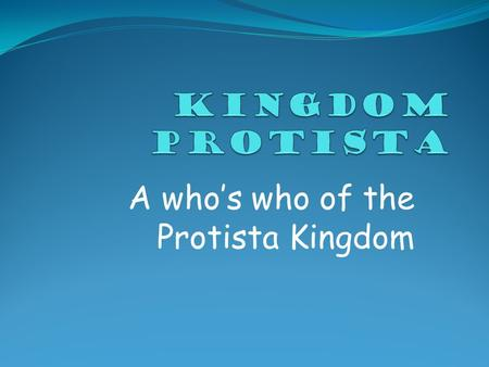 A who's who of the Protista Kingdom. What are The five kingdoms? Monera PROTISTA Fungi Plantae Animalia.