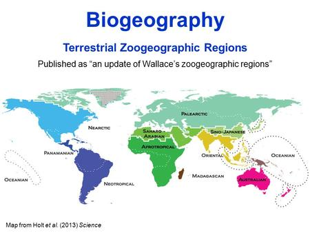 "Map from Holt et al. (2013) Science Terrestrial Zoogeographic Regions Published as ""an update of Wallace's zoogeographic regions"" Biogeography."