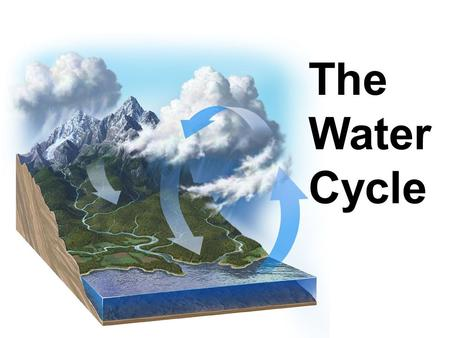 The Water Cycle. 75% of Earth's surface is covered with ocean. 25% of the surface is land (7 continents).