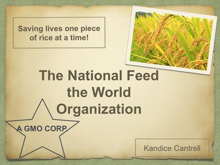 Saving lives one piece of rice at a time! Kandice Cantrell The National Feed the World Organization A GMO CORP.