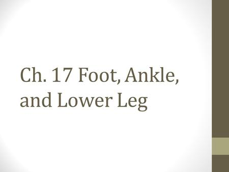 Ch. 17 Foot, Ankle, and Lower Leg. Objectives Describe the anatomy of the foot and ankle. Cite primary extrinsic and intrinsic muscles of the lower leg.