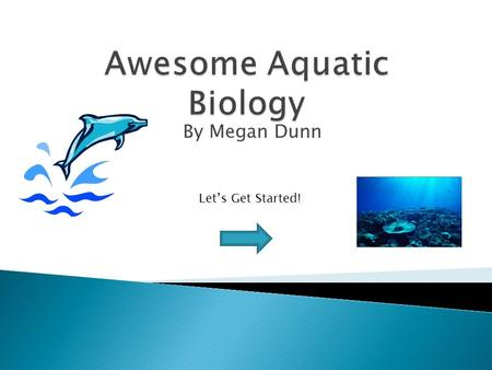 By Megan Dunn Let's Get Started!.  Think to yourself or talk to your partner about all the times you've been to the beach, ocean or aquarium!  Did you.
