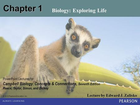 © 2012 Pearson Education, Inc. Lecture by Edward J. Zalisko PowerPoint Lectures for Campbell Biology: Concepts & Connections, Seventh Edition Reece, Taylor,