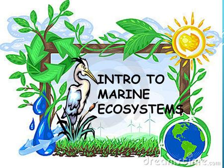 INTRO TO MARINE ECOSYSTEMS. WHAT IS ECOLOGY? Ecology- energy transfer. the scientific study of interactions between organisms and their environments,