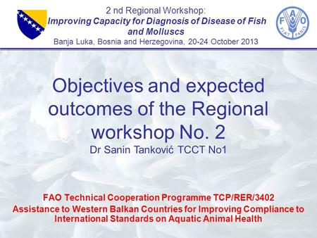 2 nd Regional Workshop: Improving Capacity for Diagnosis of Disease of Fish and Molluscs Banja Luka, Bosnia and Herzegovina, 20-24 October 2013 FAO Technical.