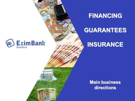 FINANCING GUARANTEES INSURANCE Main business directions.