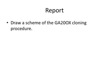 Report Draw a scheme of the GA20OX cloning procedure.