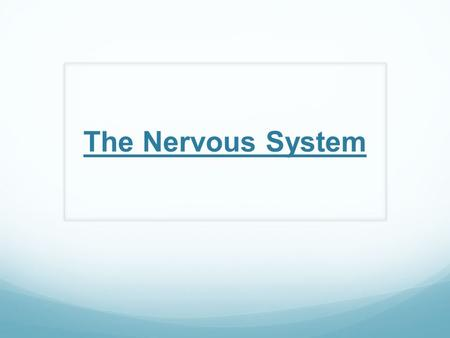The Nervous System. Nervous System Central Nervous System (CNS) – consists of the brain and spinal cord ONLY Peripheral Nervous System (PNS) – consists.