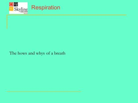 Respiration The hows and whys of a breath. The Tidal movement of air.