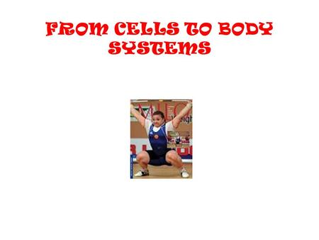 FROM CELLS TO BODY SYSTEMS. From Cells to System Cells are the basic building blocks of life. Each cell in your body does a particular job. Tissues are.