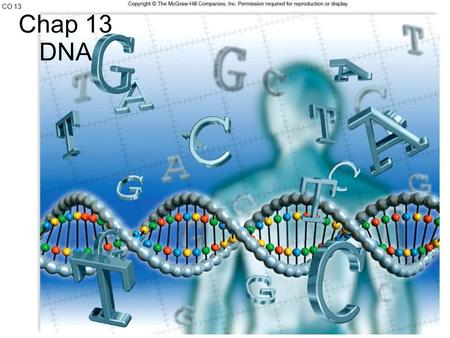 CO 13 Chap 13 DNA.